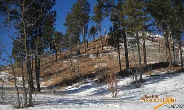BD#1,Lot 1 Two Bit Spring Rd, Deadwood, SD 57732