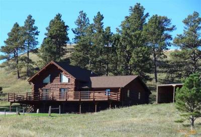 Photo of 5441 Elk Creek Rd, Piedmont, SD 57769