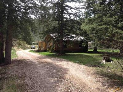 Photo of 12060 Reno Gulch Rd, Hill City, SD 57745