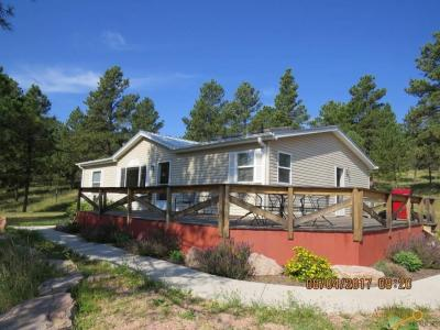 Photo of 24633 Bridle Rein Dr, Hermosa, SD 57744