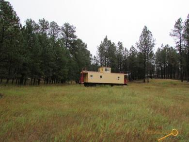 12794 Wolframite Rd, Hill City, SD 57745