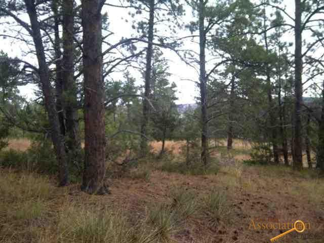 Lot 18 Pine Haven Road, Hot Springs, SD 57747