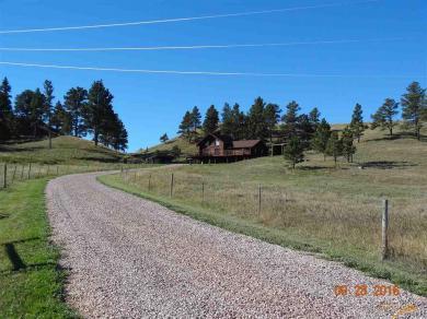 5441 Elk Creek Rd, Piedmont, SD 57769