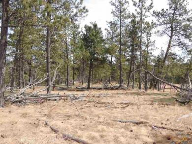 Lot 14 Wolf Ln, Hot Springs, SD 57747