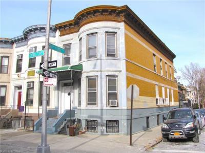 Photo of Brooklyn, NY 11209