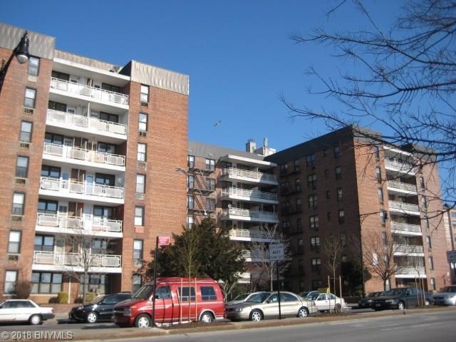 3235 Emmons Avenue #305, Brooklyn, NY 11235