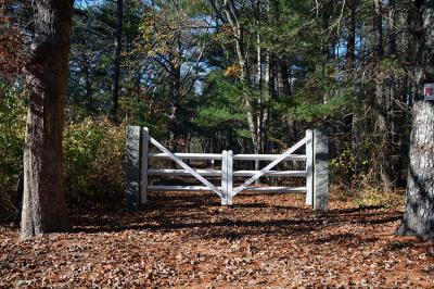 Photo of 223 State Road, West Tisbury, MA 02575