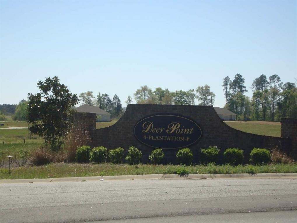 Lot 22 Deer Point, Hawkinsville, GA 31036