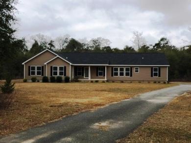 18 Ruby, Hawkinsville, GA 31036