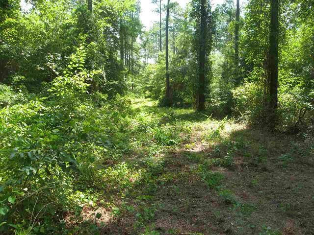 Lot 1 Pitts Road (8.81 Acres), Hawkinsville, GA 31036