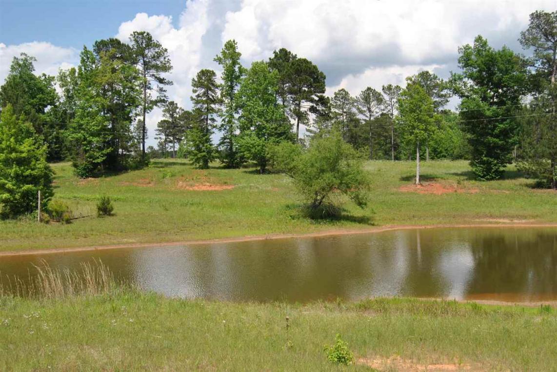 3.33 acres Trick Run & Champion, Forsyth, GA 31029