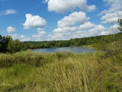 Photo of T059 002 Hwy 80, Jeffersonville, GA 31044