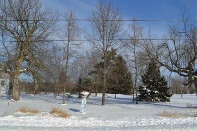 Ptlt25 Principale Parts 4 & 7 Street, Wendover, Ontario K0A3K0
