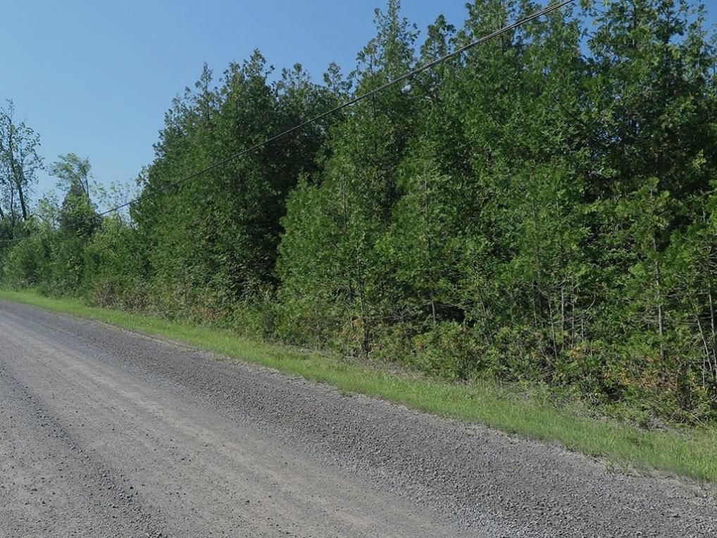Mccully Road, Prescott, Ontario K0E1T0