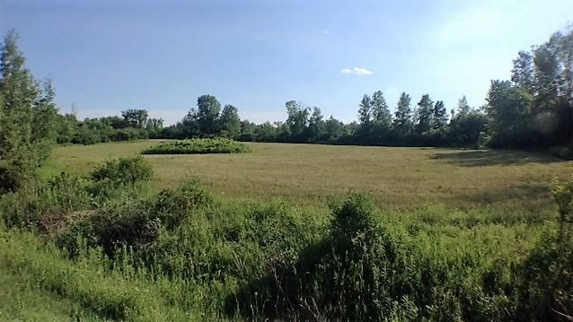 3080 Blanchfield Road, Osgoode, Ontario K0A2W0