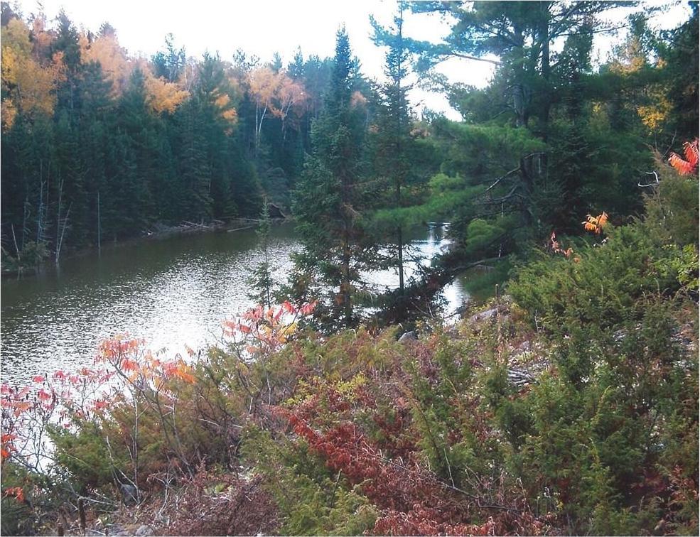 3510 Foymount Road, Eganville, Ontario K0J1M0