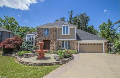 Photo of 18600 Rustic Hollow, Strongsville, Ohio 44136