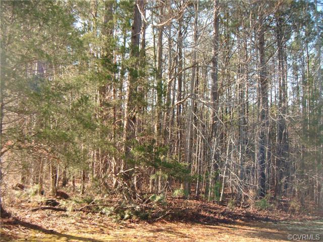South Ridge Road, Blackstone, VA 23824
