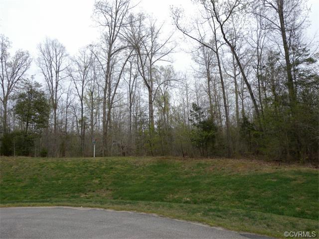 15630 Chesdin Manor Drive, Chesterfield, VA 23838