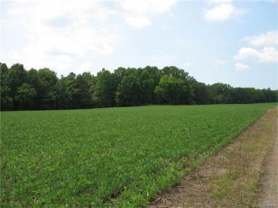 Photo of 00 Mckanns Road, Laneview, VA 22504