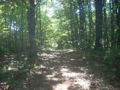 Photo of 32 Hidden Cove Lane, Mosinee, WI 54455