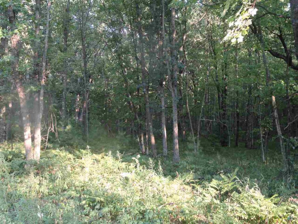 Lot 10 Woodberry Acres Ray Art Rd., Iola, WI 54945