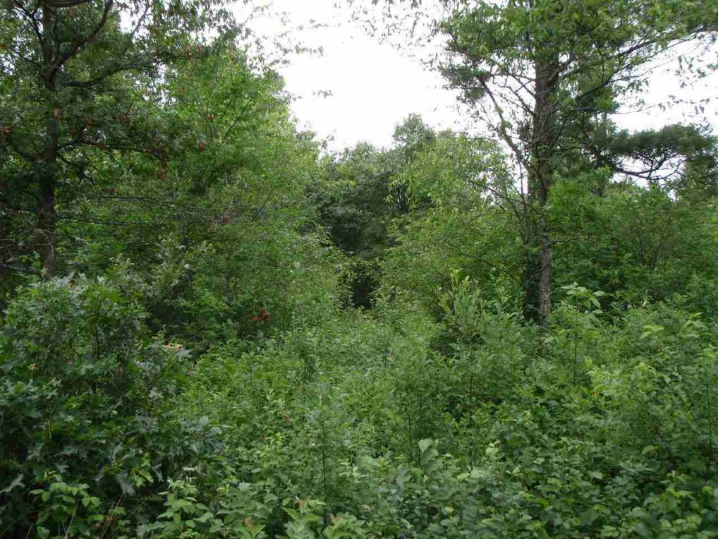 Lot 11 Woodberry Acres Ray Art Rd., Iola, WI 54945