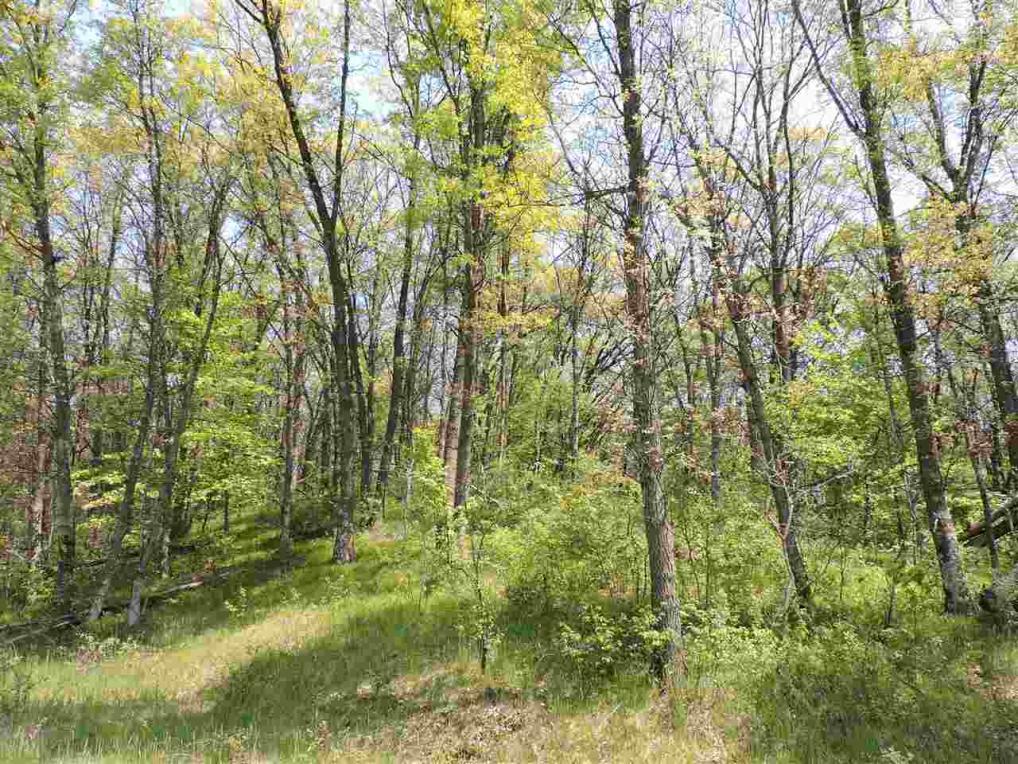 4650 Turkey Trail Lot #3 Woodland Heights, Amherst, WI 54406