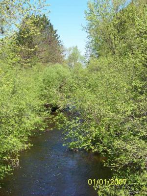 Photo of 000 County Road M, Rib Lake, WI 54470
