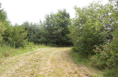 N7292 Apple Tree Lane, Westboro, WI 54490