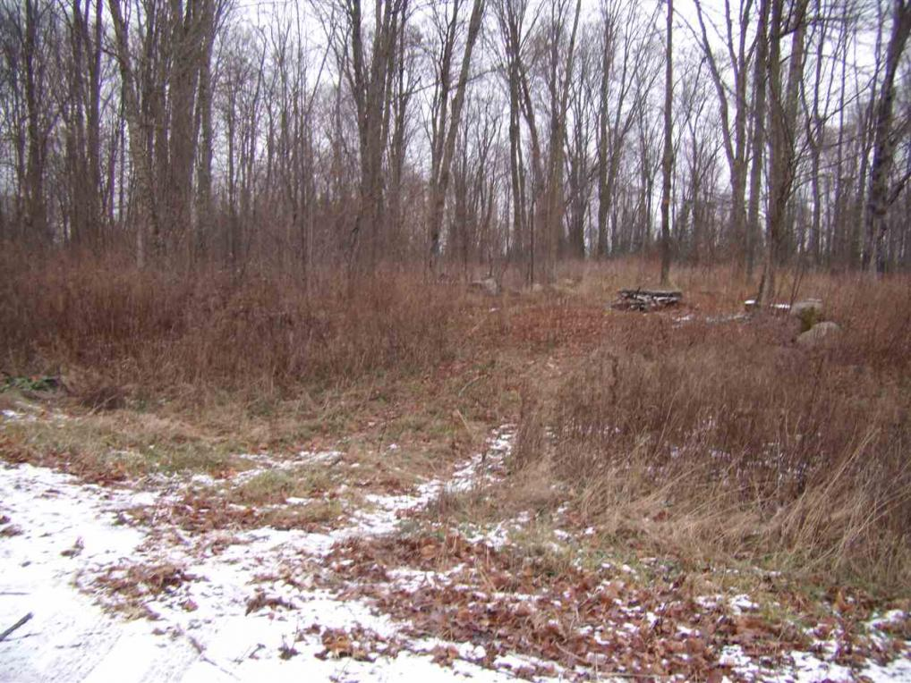 Thorn Apple Drive, Wittenberg, WI 54499