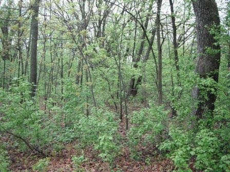 Lot 27 Lakeview Drive, Montello, WI 53949