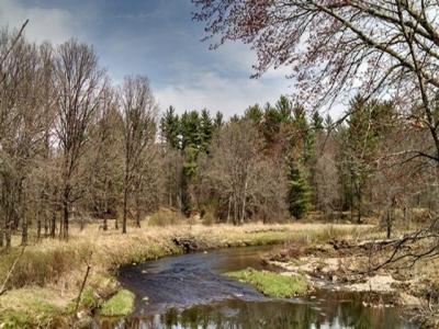 Photo of Rouse Road, Neillsville, WI 54456