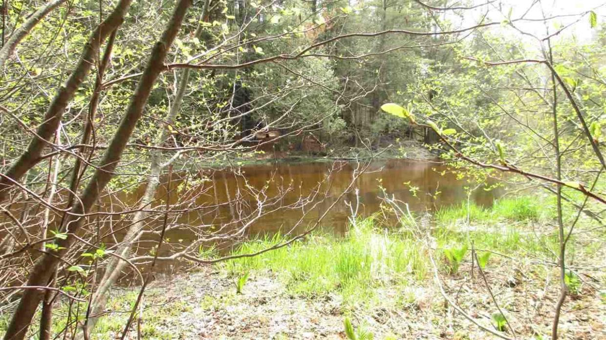Lot 48 Hill Top Court, Hatley, WI 54440