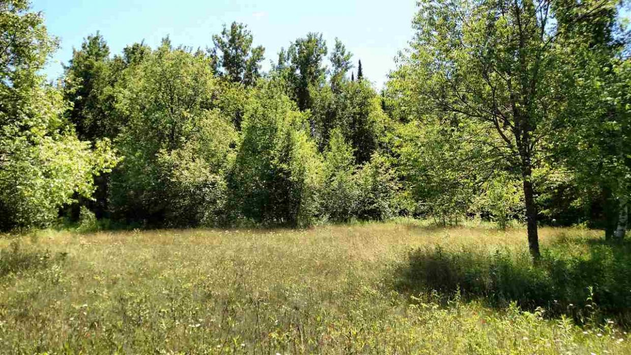 LOT 4 County Road W, Phillips, WI 54555