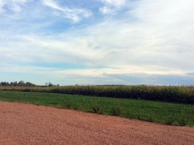 Photo of S Draxler Drive, Marshfield, WI 54449
