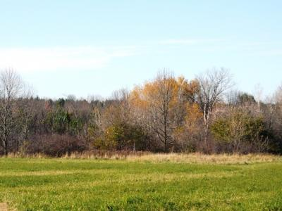 Photo of W8370 Dove Road, Willard, WI 54493