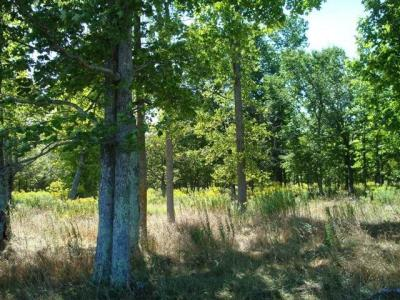 Photo of 100 acres off State Highway 64, Medford, WI 54451