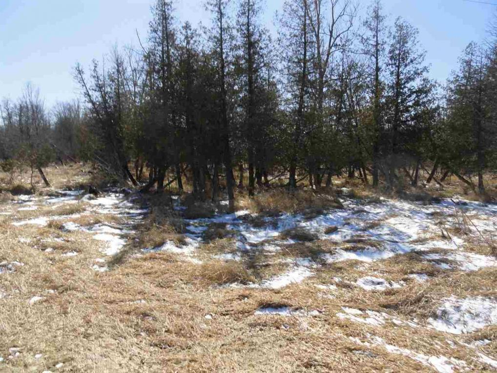 40 acres State Highway 66, Stevens Point, WI 54482