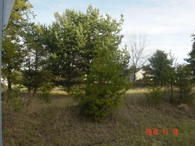 Photo of 2212 Meadow Drive, Mosinee, WI 54455