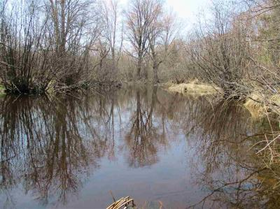 Photo of Vacant Land Martin Drive, Medford, WI 54451