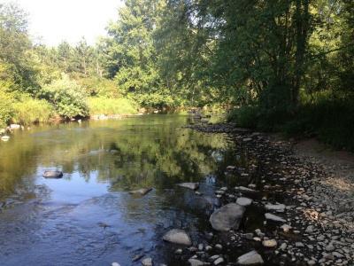 Photo of Pine River Road, Merrill, WI 54452