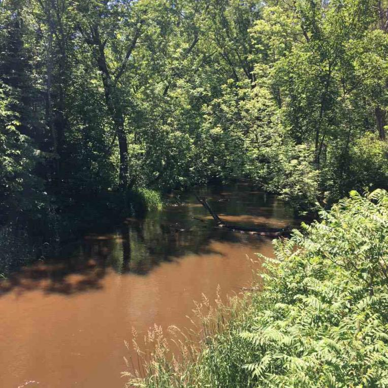 4.450 Acres 80th Street, Wisconsin Rapids, WI 54494