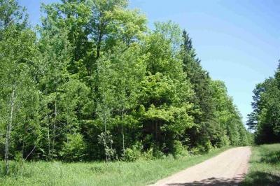 Photo of Wegner Road, Merrill, WI 54452