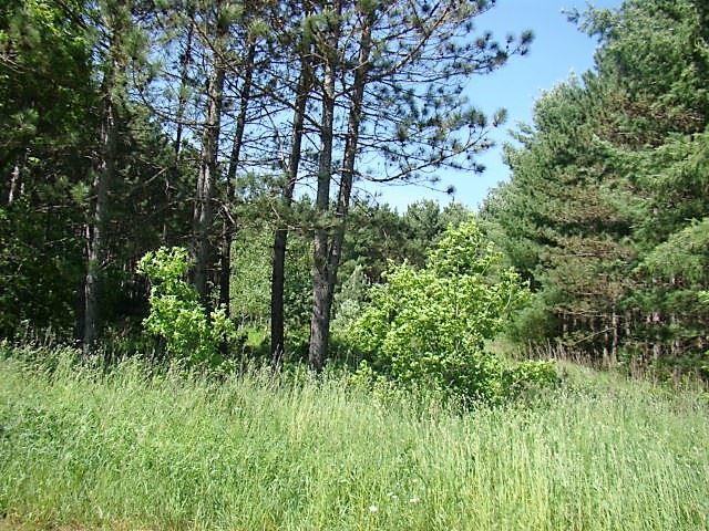 Lot #3 Straight Pine Road, Merrill, WI 54452