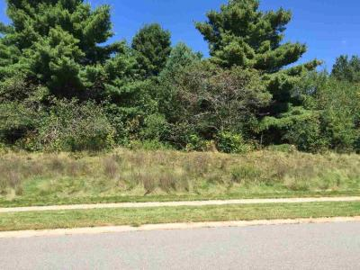Photo of 1706 Woodbury Parkway Lot 5, Wausau, WI 54403