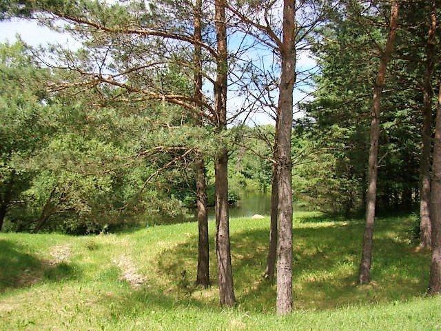 Lot #21 Prairie River Savannah, Merrill, WI 54452