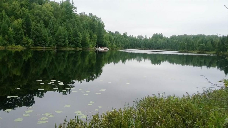 Typner Lake Road, Deerbrook, WI 54424