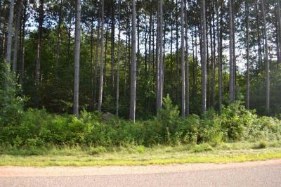 Photo of Lot #23 Lynx Road Timber Ridge Estates, Mosinee, WI 54455