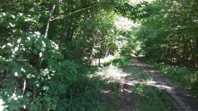 Photo of W2138 W Forest Drive, Ogema, WI 54459